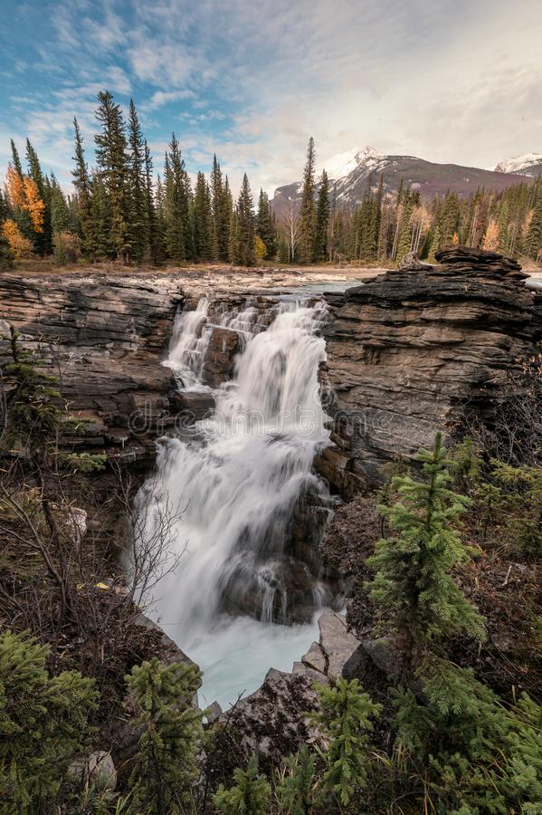 Athabasca Falls on the upper Athabasca river is waterfall in Jasper national park royalty free stock images