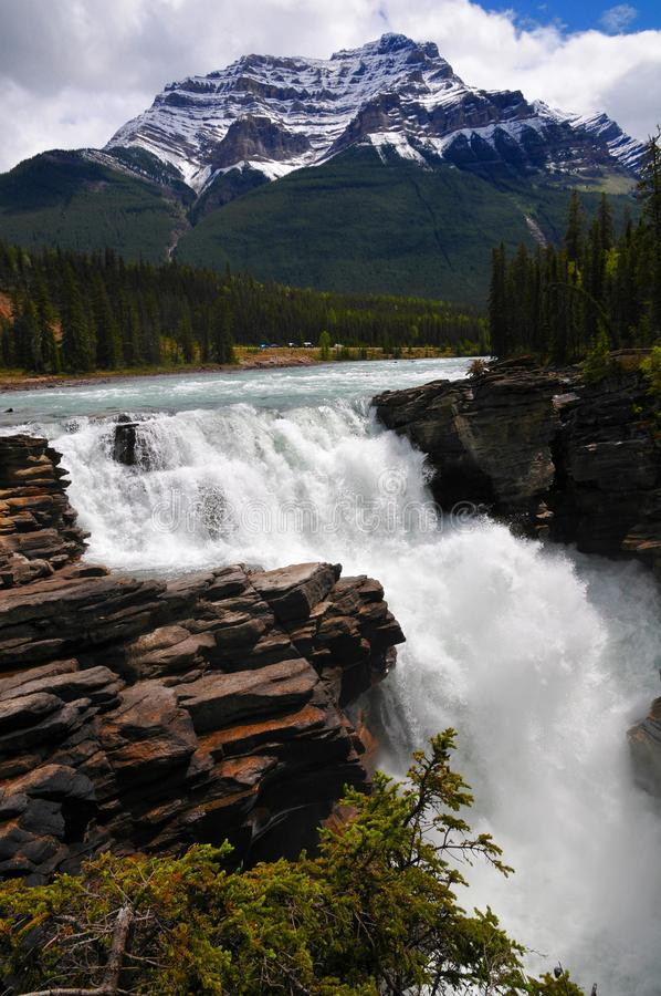 Poster perfect beautiful Athabasca water fall in jasper national park. Canadian Rockies in Alberta Canada royalty free stock photography