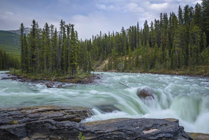 Athabasca-Fluss bei Sunwapta Falls stockfotos