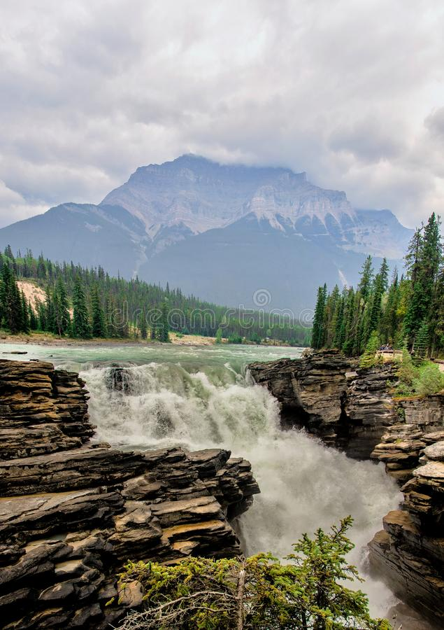 Athabasca magnifico cade dentro in Rocky Mountains, Jasper National Park, Alberta, Canada fotografia stock