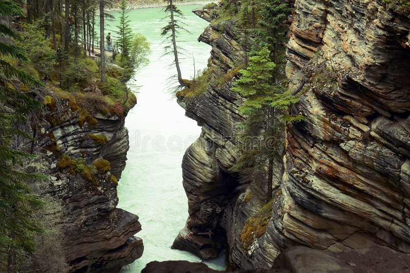 Athabasca River royalty free stock image