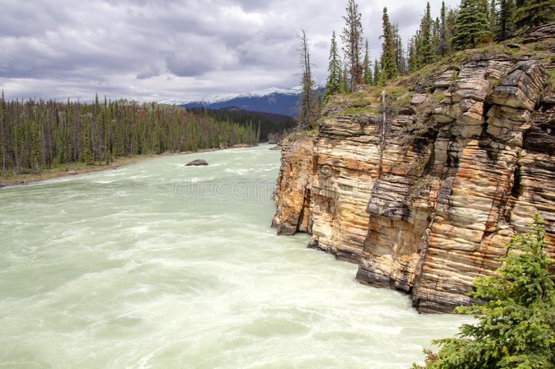 Athabasca River, Icefields Parkway, Jasper National Park, Canada royalty free stock photos