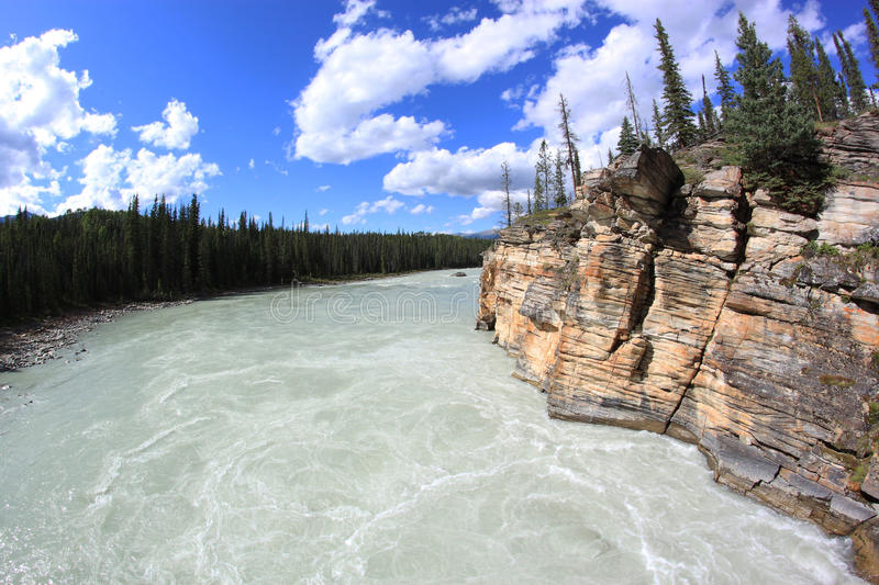 Athabasca River in Jasper National Park, Alberta,. Athabasca River, Jasper National Park, Alberta, Canada Wild and babbling mountain river in Canadian Rockies stock image