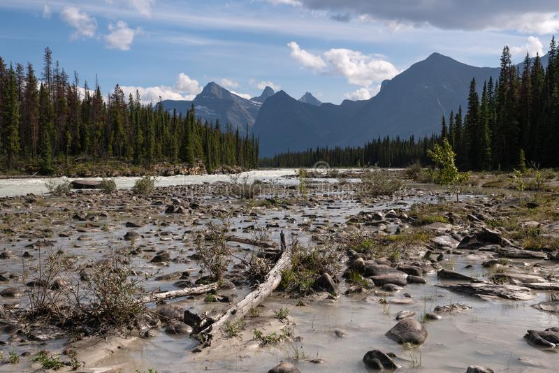 Athabasca River, Jasper National Park, Rocky Mountains, Alberta, Canada stock image