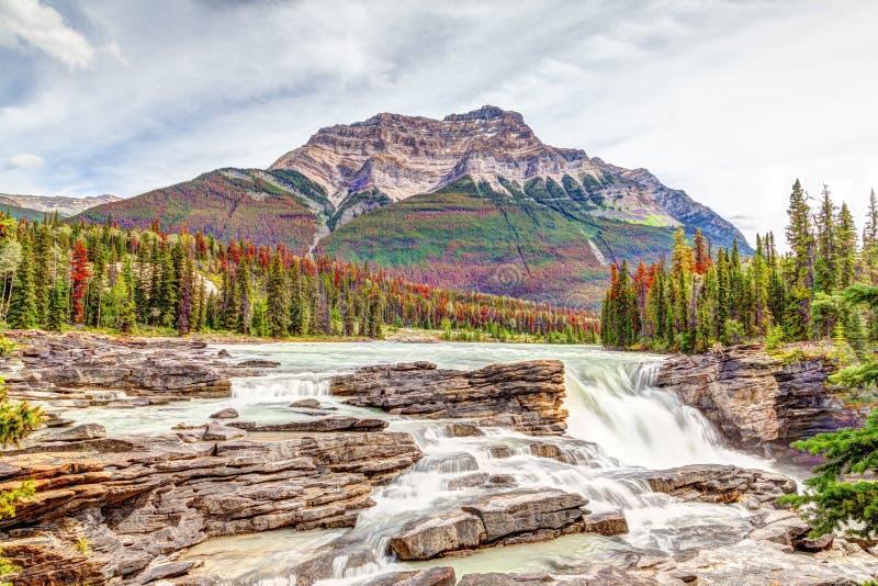 Athabasca spadki w jesień kolorach przy Jaspisowym parkiem narodowym fotografia royalty free