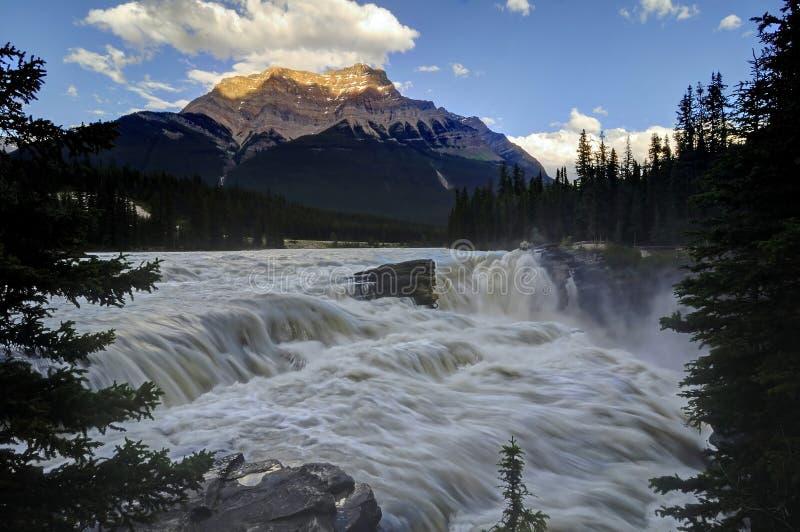 Athabasca tombe au coucher du soleil photo libre de droits
