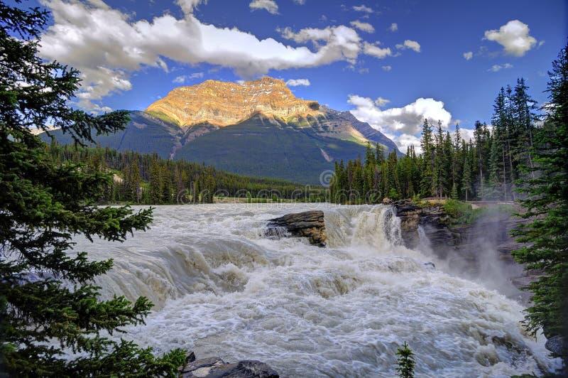 Athabasca tombe au coucher du soleil photos libres de droits