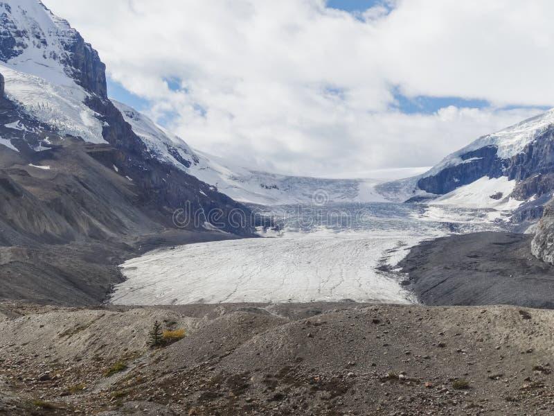 Athabascagletsjer bij het nationale park van Colombia icefield japser royalty-vrije stock afbeelding