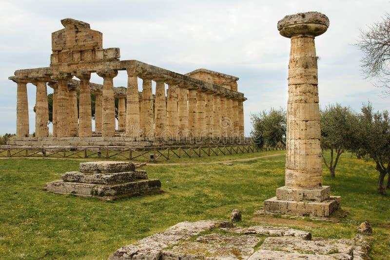 athena tempel Paestum salerno Campania italy arkivbilder