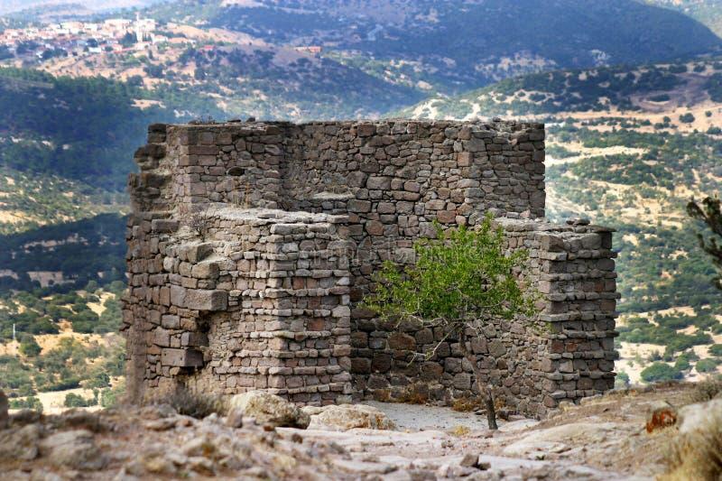 Athena Temple i Assos arkivfoto