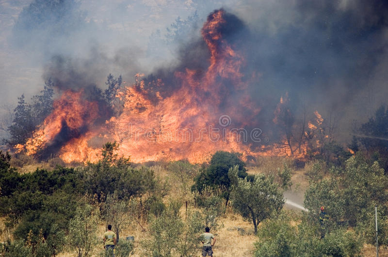 Athens forest fires royalty free stock images