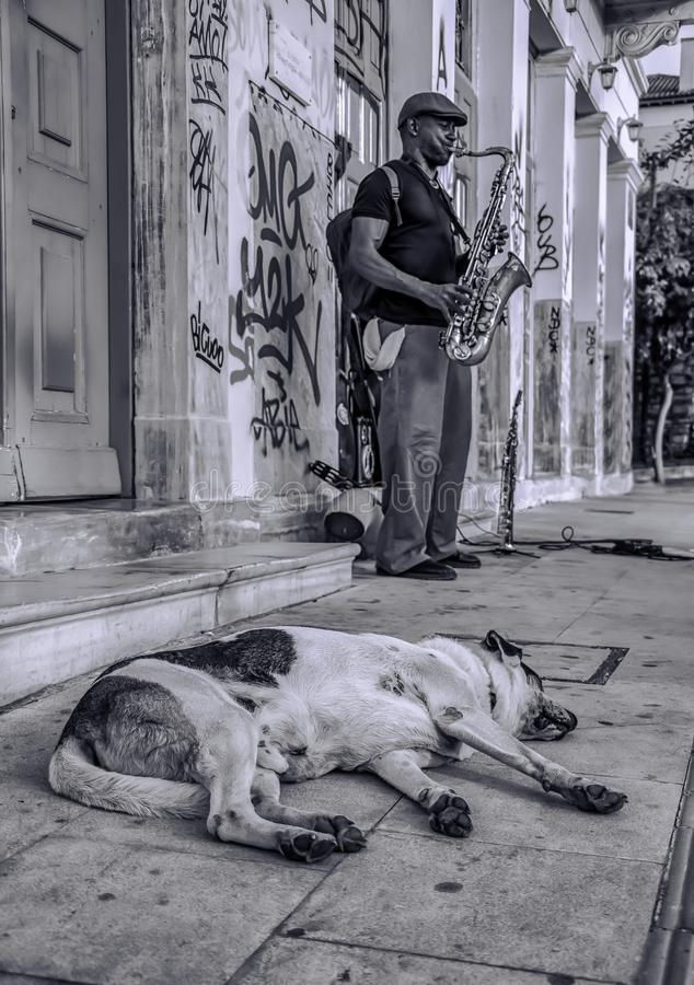 Athens - Greece Acropolis street. Black and white street photography royalty free stock images