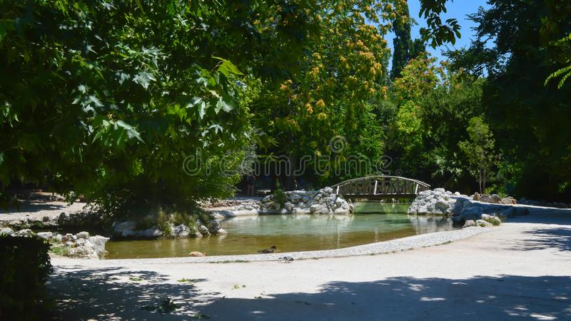 National Garden in Athens, Greece on June 23, 2017. ATHENS, GREECE - JUNE 23: National Garden in Athens, Greece on June 23, 2017 royalty free stock photography
