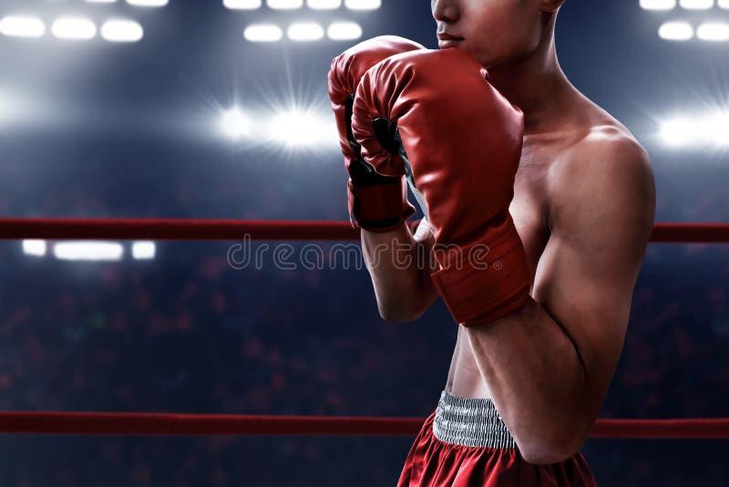 Athlète de boxeur dans l'anneau photographie stock libre de droits