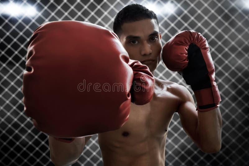 Athlète de boxeur dans l'anneau images libres de droits