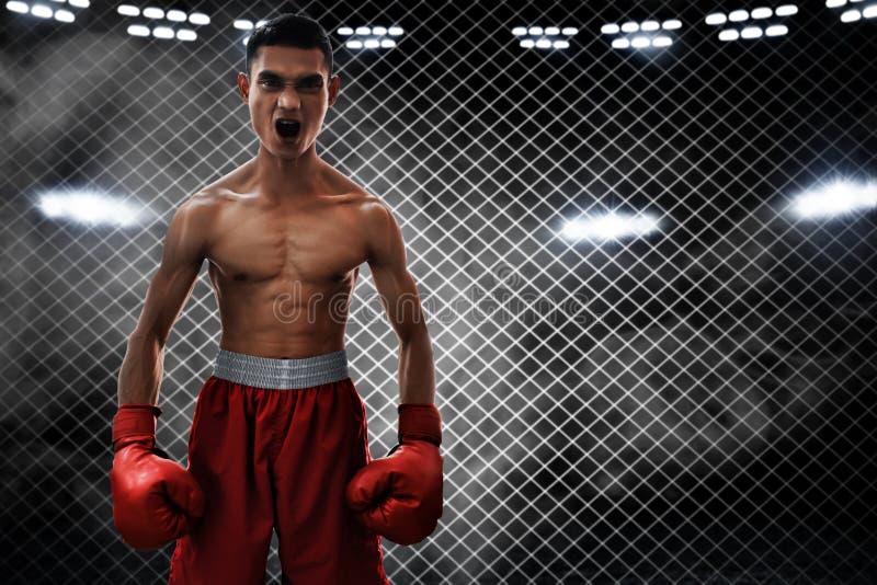 Athlète de boxeur dans l'anneau photos libres de droits