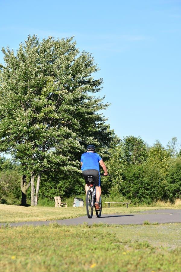Athlète masculin adulte Working Out Biking photographie stock libre de droits