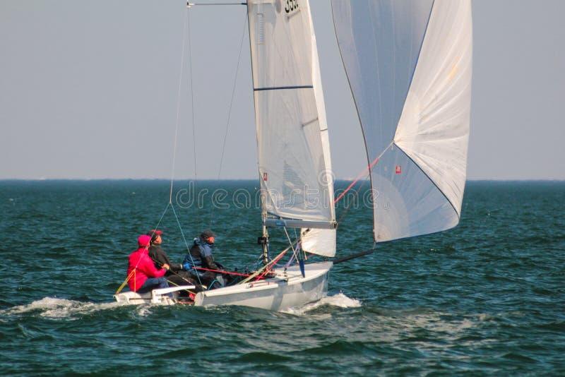 Athlètes d'équipe participant à la concurrence de navigation - régate, tenue en Odessa Ukraine SB20 - photo libre de droits