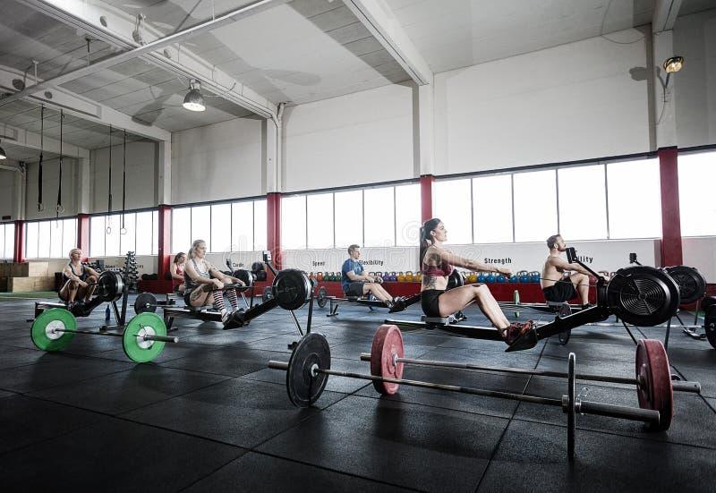Athlètes féminins et masculins à l'aide de la machine à ramer image libre de droits