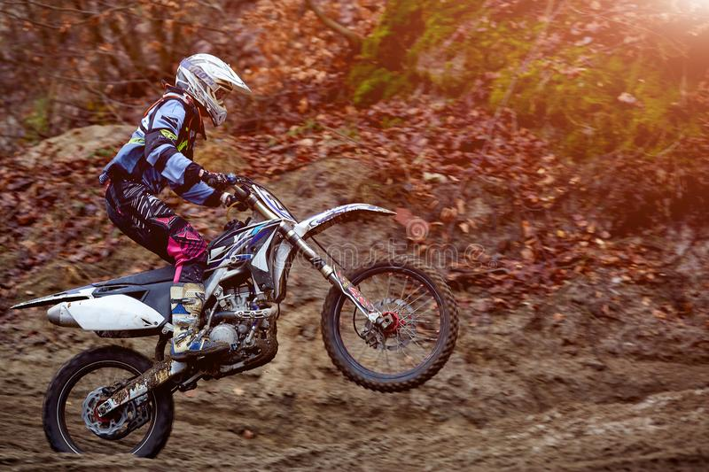 Athlete bike enduro in forest trail downhill competition motocross stock image