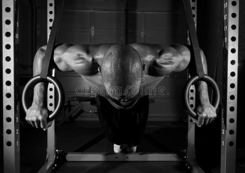 Athlete doing push up on rings. Athlete doing a push up on rings royalty free stock photo