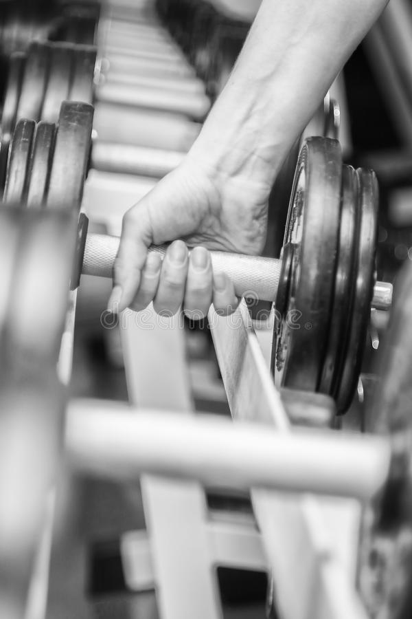 The athlete in the gym royalty free stock photo