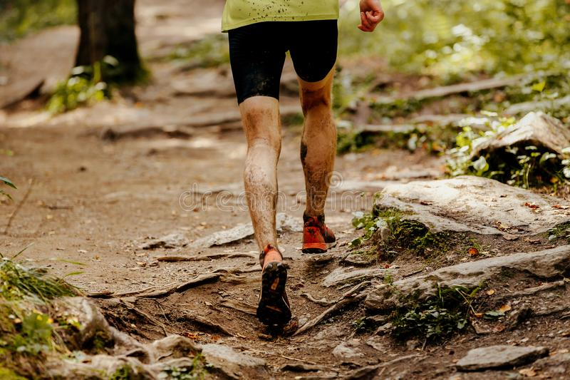 Athlete runner dirty feet. Running forest trail royalty free stock photos