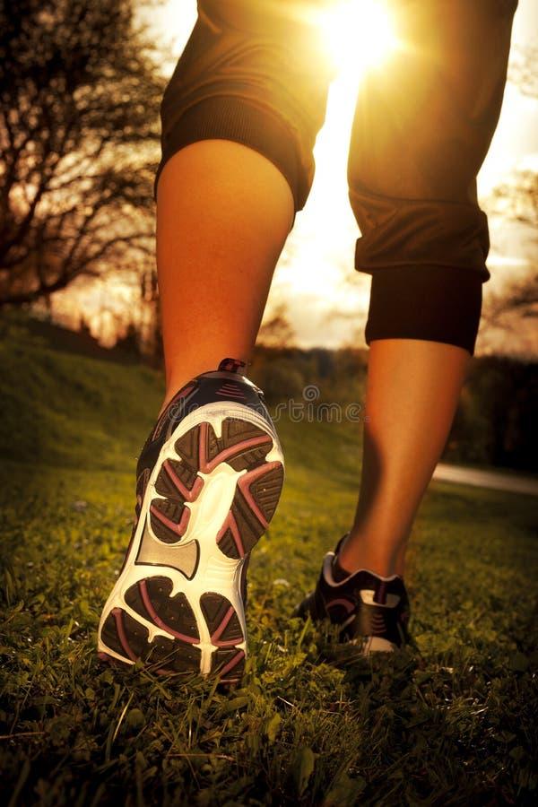 Athlete runner feet running on grass. Closeup on shoe. Woman fitness sunrise jog workout wellness concept royalty free stock image