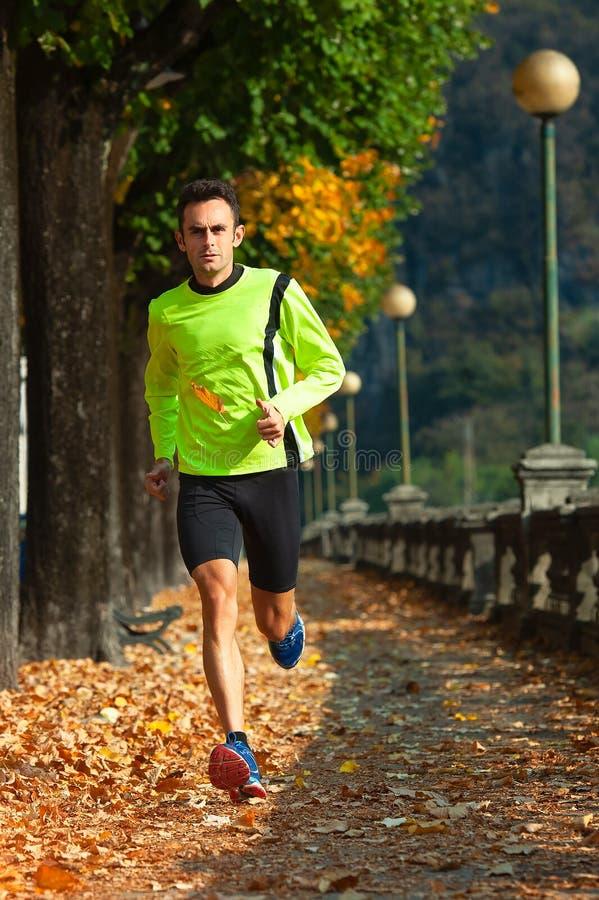 Athletenmann läuft in Training im Fall lizenzfreies stockfoto