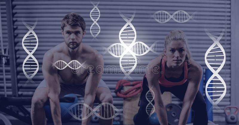 Athletic fit couple in gym with genetic biology interface royalty free stock photography
