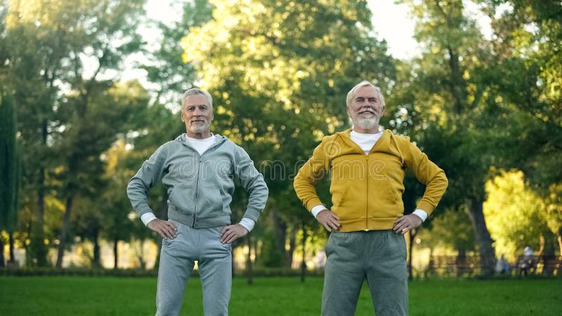 Athletic grandfathers doing morning exercises in park, fitness activity wellness royalty free stock images