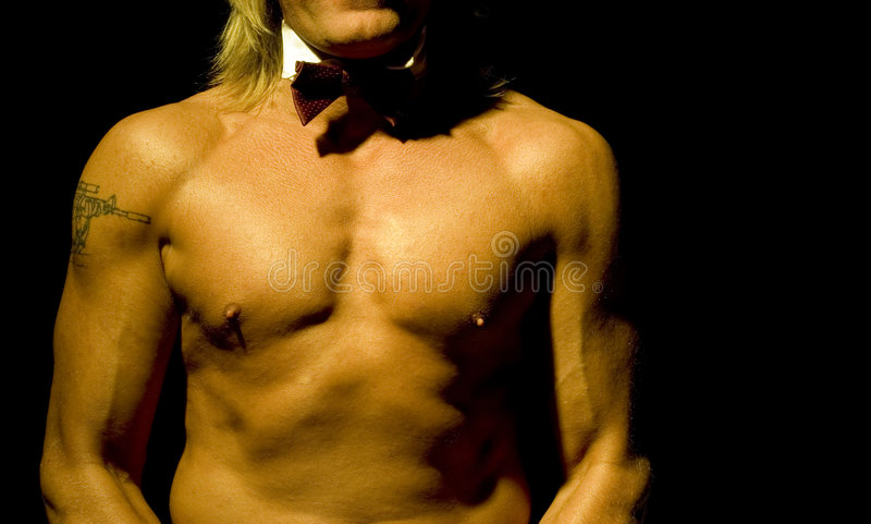 Download Athletic male torso stock image. Image of athletic, anatomy - 520969