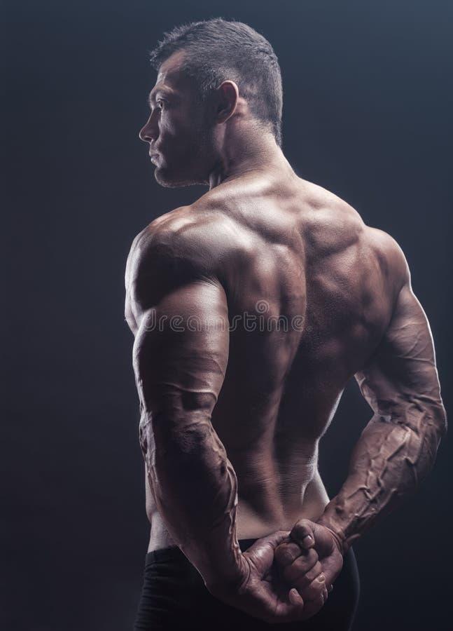 Muscular back stock image. Image of lifting, caucasian - 105797369