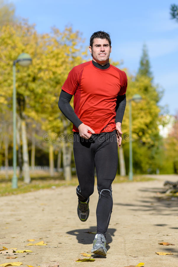 Download Athletic runner stock image. Image of male, adult, handsome - 27932231