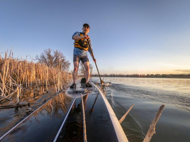 Athletic senior man on paddleboard stock photo