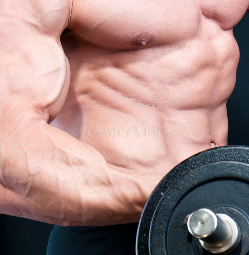 Athletic attractive male body builder stock photography