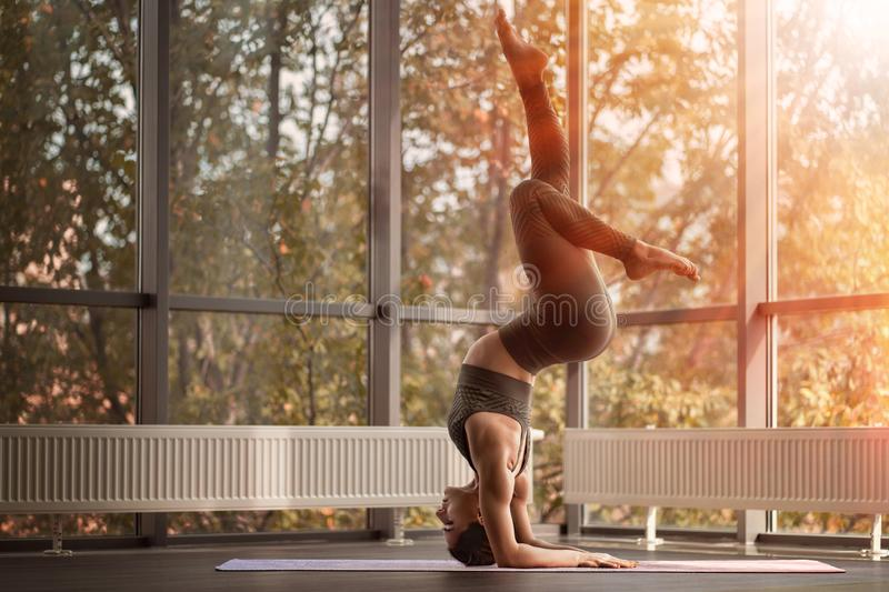 Athletic woman practices yoga. Sun shines through the window royalty free stock photo