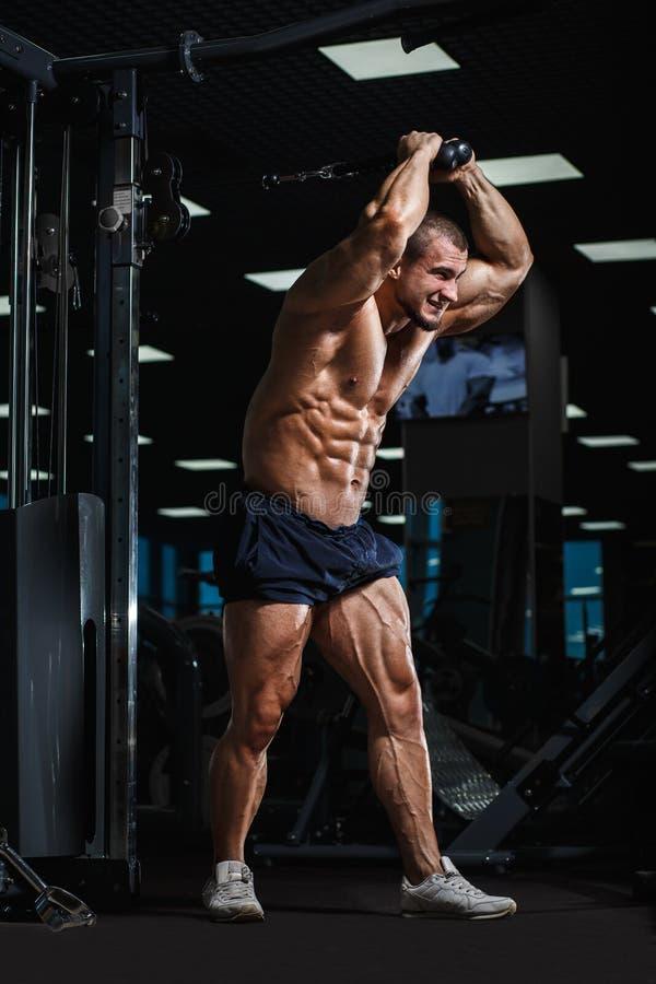 Athletischer Bodybuilder Muscularl, der Trizeps tut, trainiert in der Turnhalle lizenzfreie stockbilder