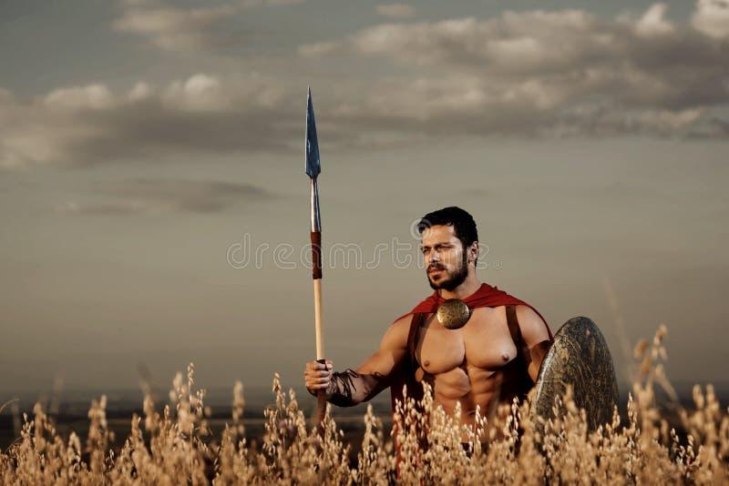 Athletischer Krieger wie spartanisches unter Gras auf dem Gebiet stockfotos