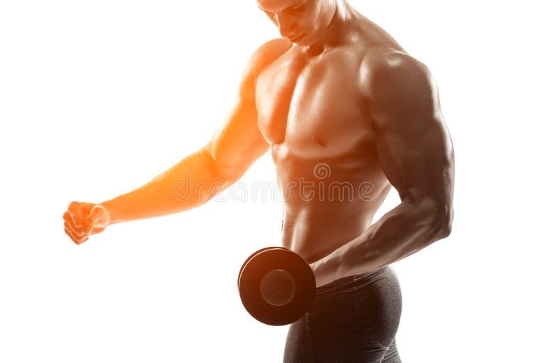 Athletischer Mann, der muskulösen Körper zeigt und Übungen mit Dummköpfen tut lizenzfreies stockfoto