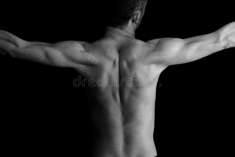 Athletischer Mann. Torso. Schwarzweiss lizenzfreie stockbilder