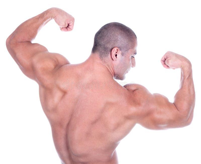 Athletisches reizvolles attraktives männliche Karosserie builde stockfotos