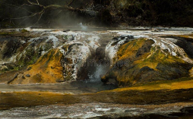 Atividade térmica - Waimangu imagens de stock royalty free