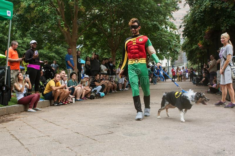 Contestants Wearing Batman And Robin Costumes Participate In Doggy Con. Atlanta, GA, USA - August 18, 2018: A man wearing a Robin costume walks his dog wearing a royalty free stock image