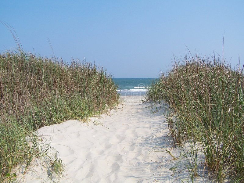 Download Atlantic Beach stock image. Image of carolina, grass, america - 4433465