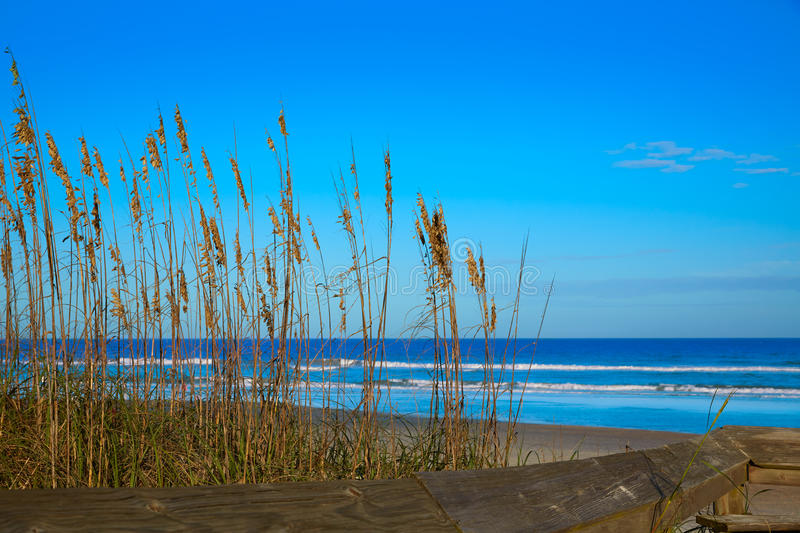 Atlantic Beach in Jacksonville of florida USA. Atlantic Beach in Jacksonville East of Florida USA US stock images