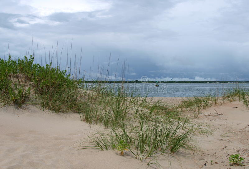 Atlantic Beach. Sea grass and foliage in the dunes in Atlantic Beach, North Carolina royalty free stock image