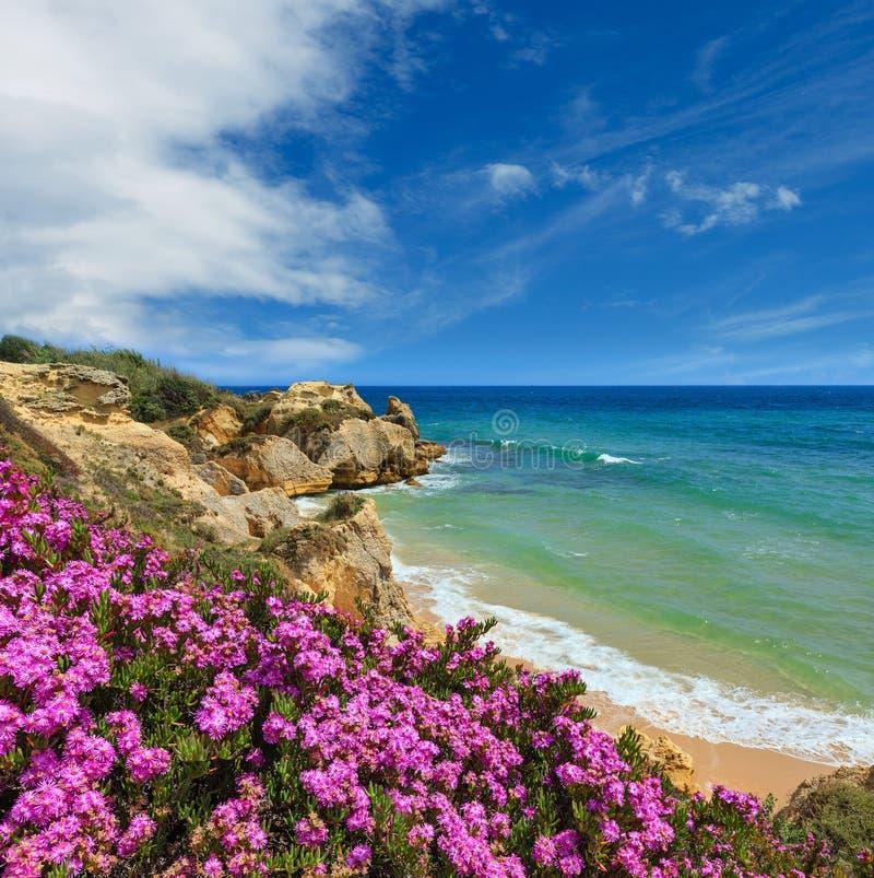 Atlantic blossoming coast view, Algarve, Portugal. Summer blossoming Atlantic rocky coast view with purple flowers and narrow sandy beach, Albufeira outskirts stock photos