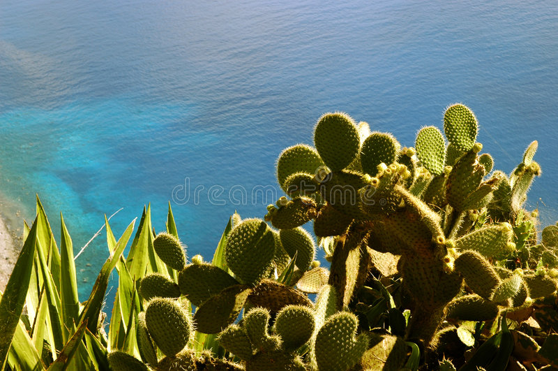Atlantic Ocean. View on the Atlantic Ocean from Cabo Girao, Madeira royalty free stock photo