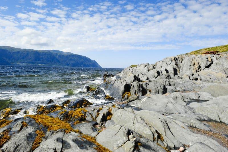 Atlantic Ocean in Newfoundland royalty free stock photography